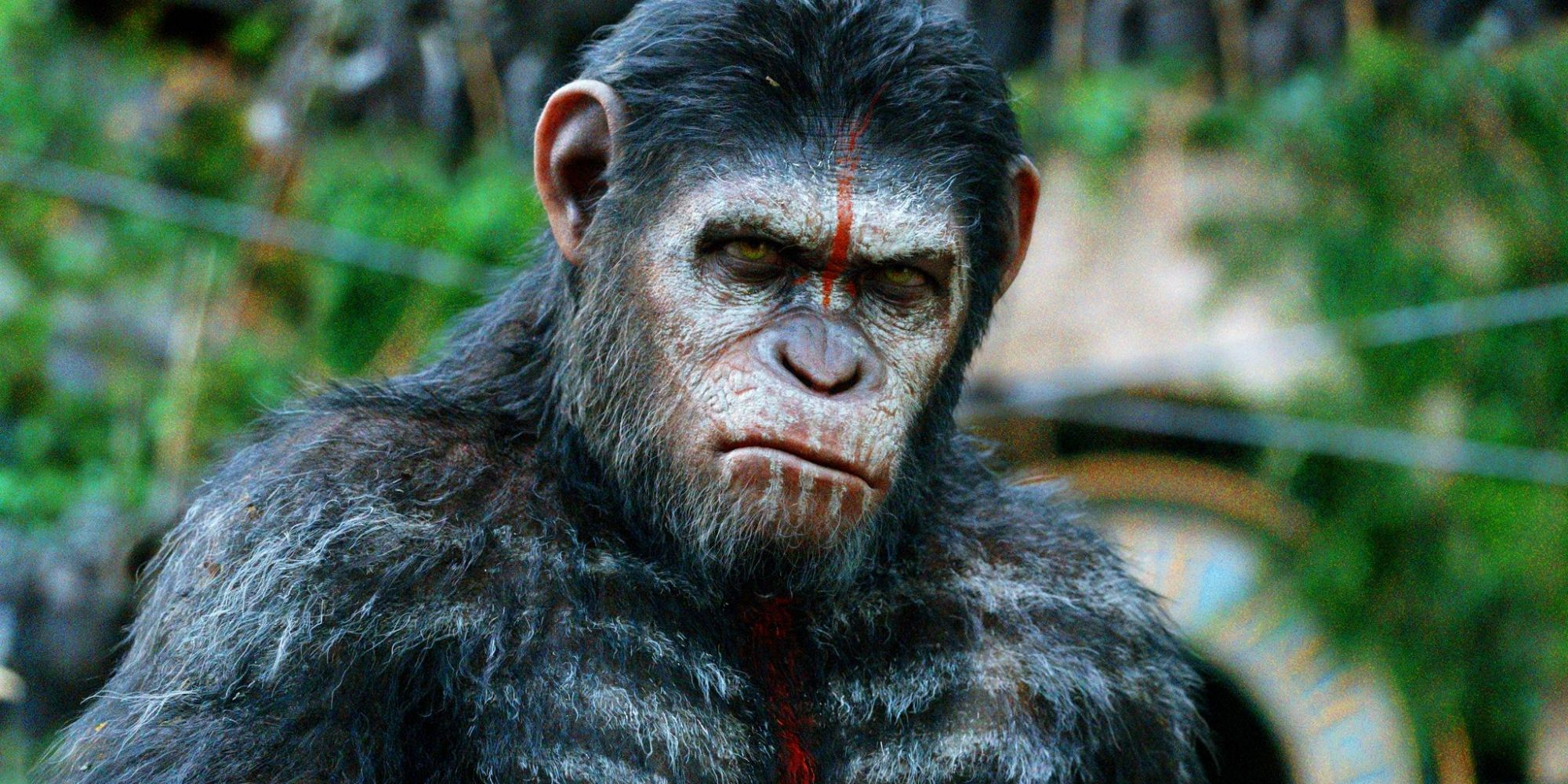 Planet Of The Apes Caesar