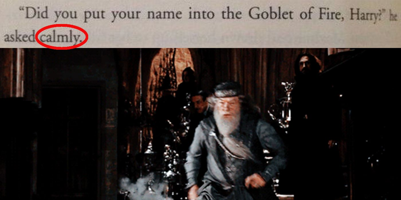 20 Most WTF Things Dumbledore Has Ever Done   ScreenRant