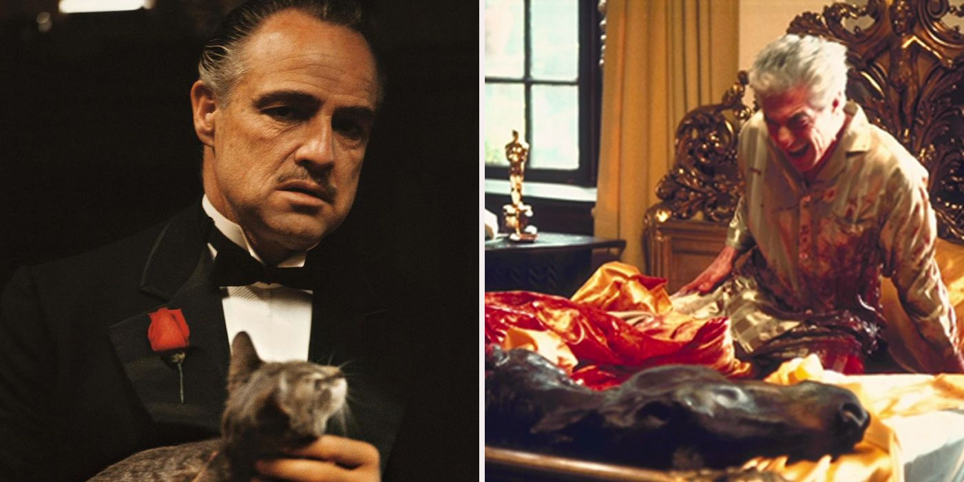 Things You Never Knew Know About The Godfather | ScreenRant