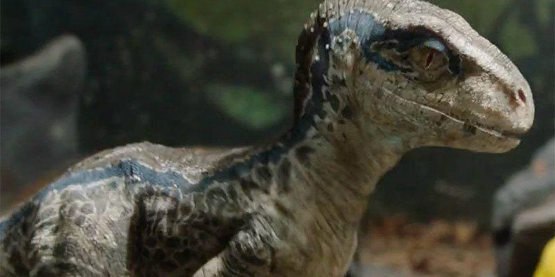 every dinosaur in the jurassic world fallen kingdom trailer