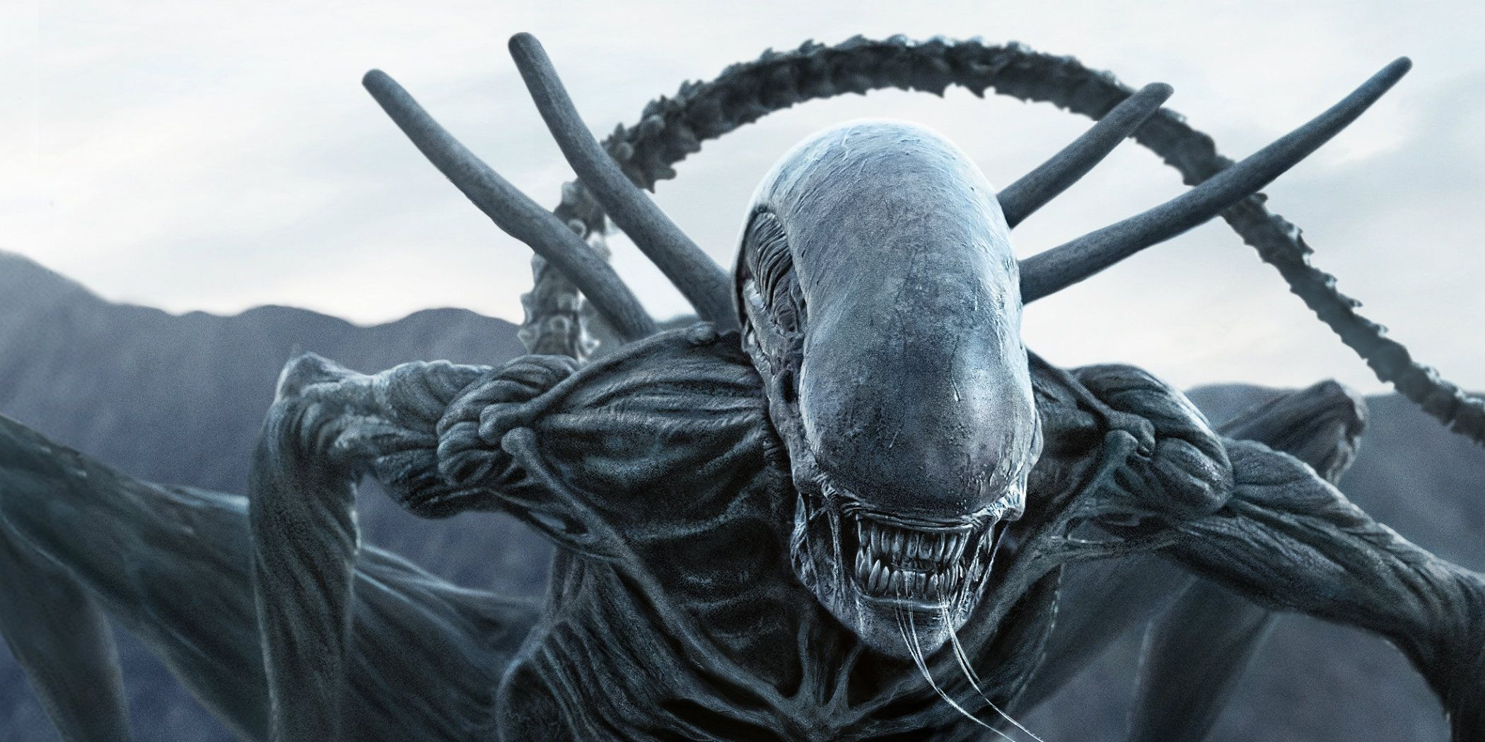 Alien Photo: Celebrate Alien Day With An All-New Virtual Reality Experience