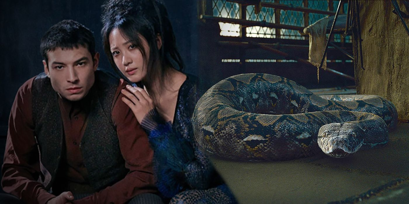 Fantastic Beasts 2: Voldemort Snake Theory Officially ...