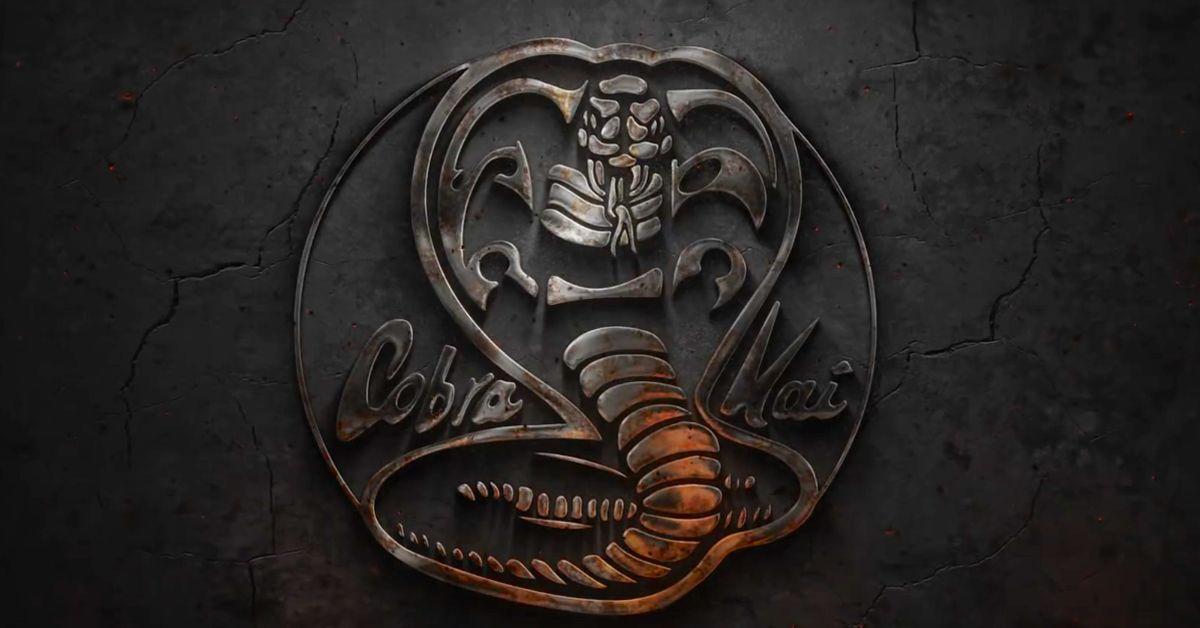 Cobra Kai: 5 Questions Season 2 Answered & 5 It Didn't