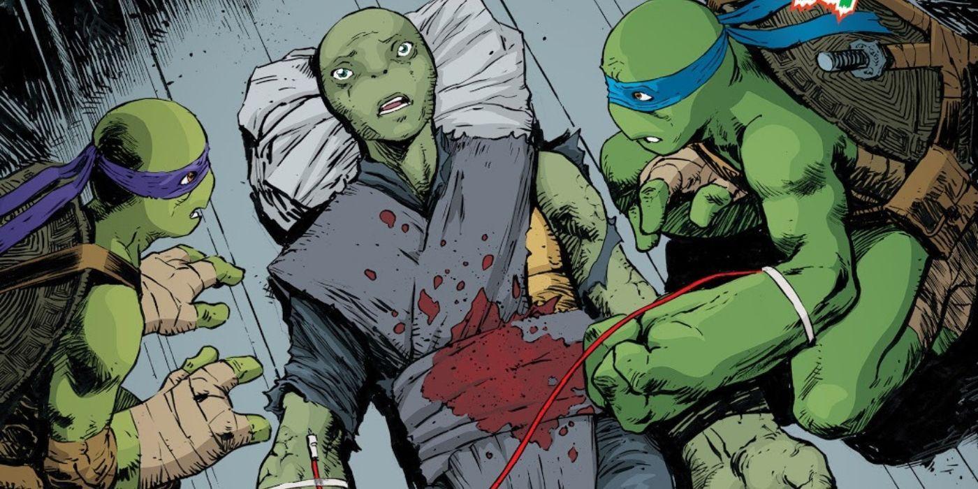 Meet The New, FEMALE Teenage Mutant Ninja Turtle   Screen Rant