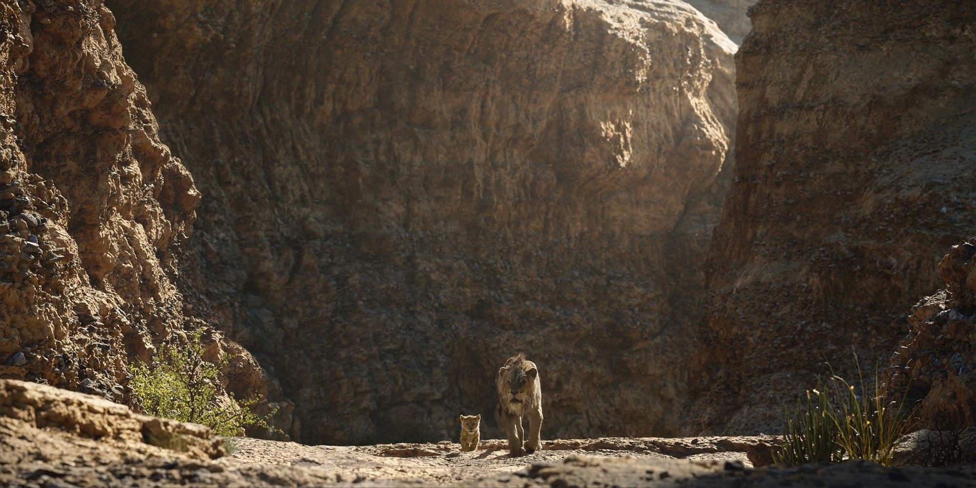 How The Lion King 2019 Took Advantage of Unlimited Cinematography