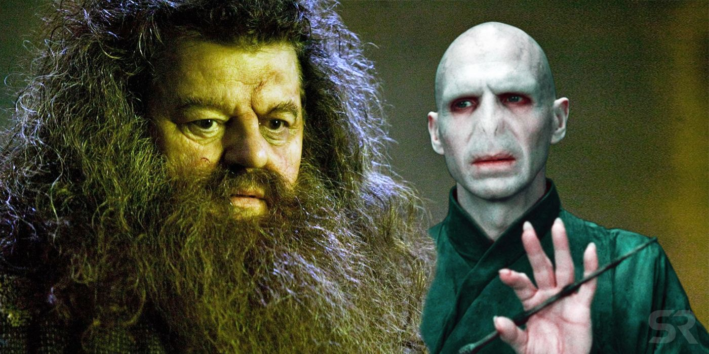 Harry Potter Theory: Hagrid Was Voldemort's Secret Death Eater