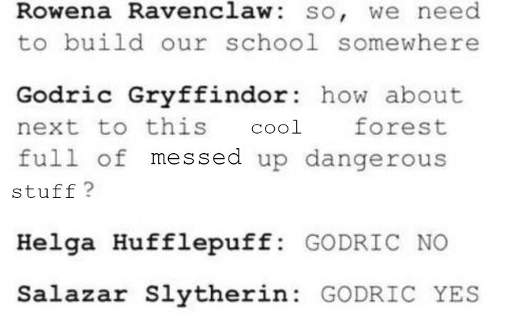 Harry Potter: 10 Hysterical Hogwarts Founders' Logic Memes