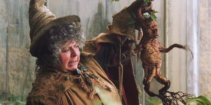 https://static0.srcdn.com/wordpress/wp-content/uploads/2019/11/Miriam-Margolyes-As-Pomona-Sprout-In-Harry-Potter.jpg?q=50&fit=crop&w=740&h=370