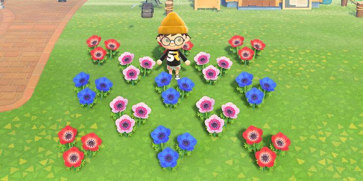 Animal Crossing New Horizons How To Grow Hybrid Flowers