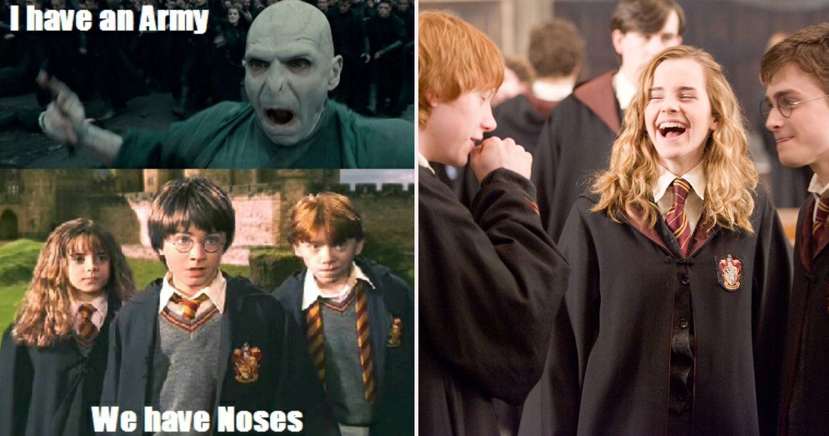 Harry Potter: 10 Golden Trio Memes Fans Will Love | ScreenRant