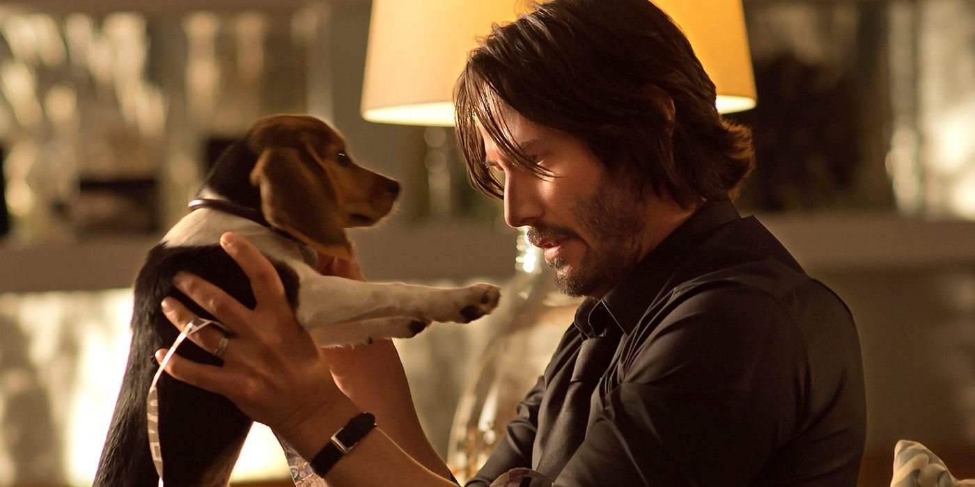 Killing John Wick S Dog Caused A Behind The Scenes Fight
