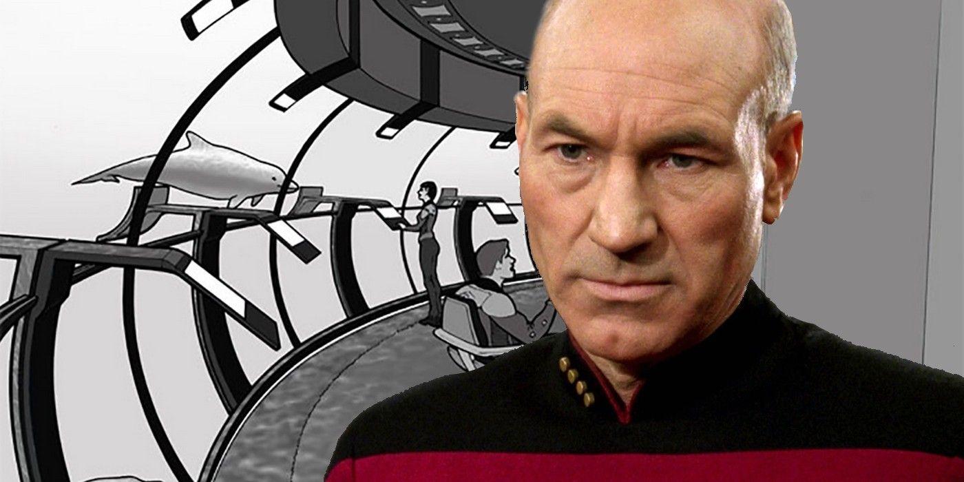 Star Trek: TNG's Enterprise Had Dolphin & Whale Crewmembers