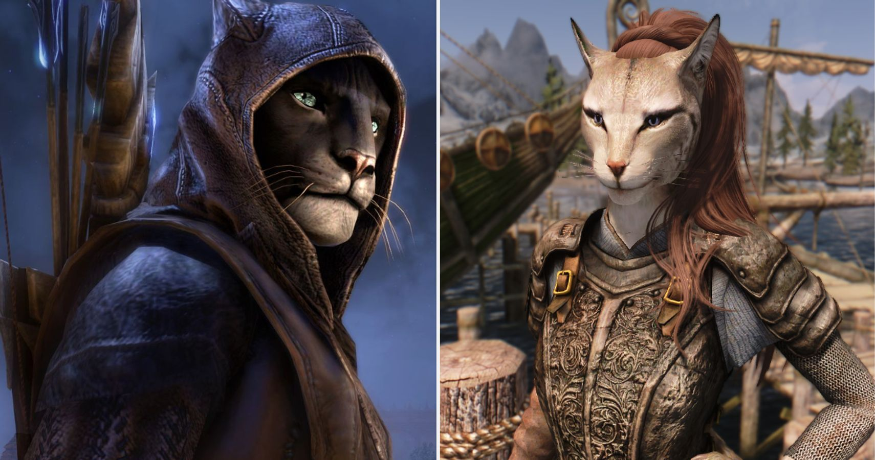 Skyrim: 10 Things You Didnt Know About Khajiit | ScreenRant